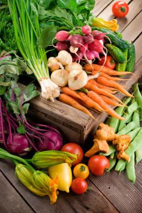 My organic food garden for Cuisine garden